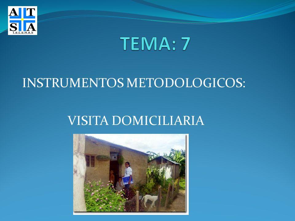 INSTRUMENTOS METODOLOGICOS: VISITA DOMICILIARIA