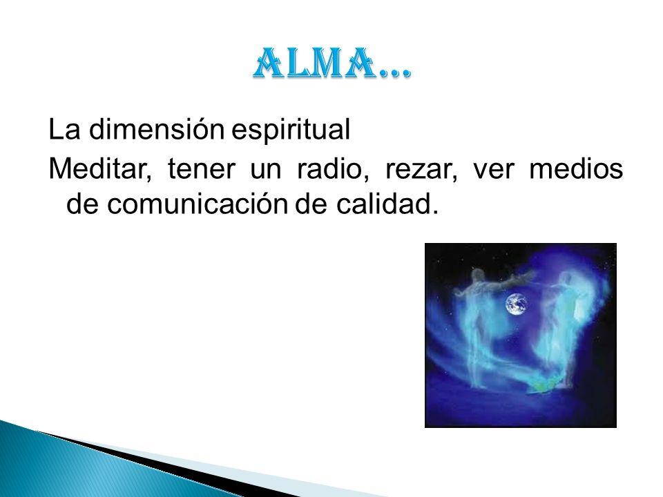 ALMA… La dimensión espiritual Meditar, tener un radio, rezar, ver medios de comunicación de calidad.