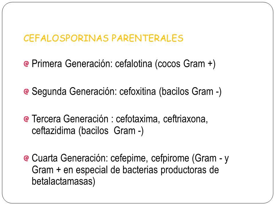 Primera Generación: cefalotina (cocos Gram +)