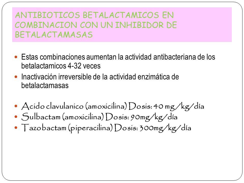 ANTIBIOTICOS BETALACTAMICOS EN COMBINACION CON UN INHIBIDOR DE BETALACTAMASAS