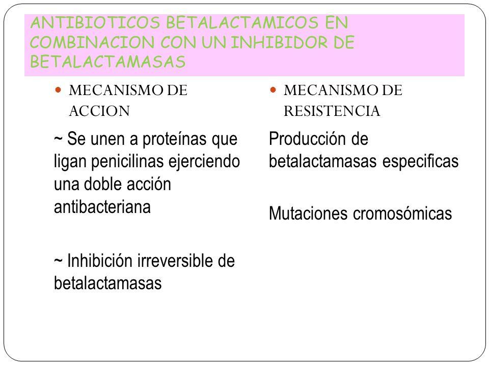 ~ Inhibición irreversible de betalactamasas