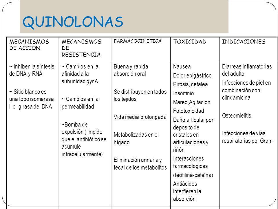 QUINOLONAS ~ Inhiben la síntesis de DNA y RNA
