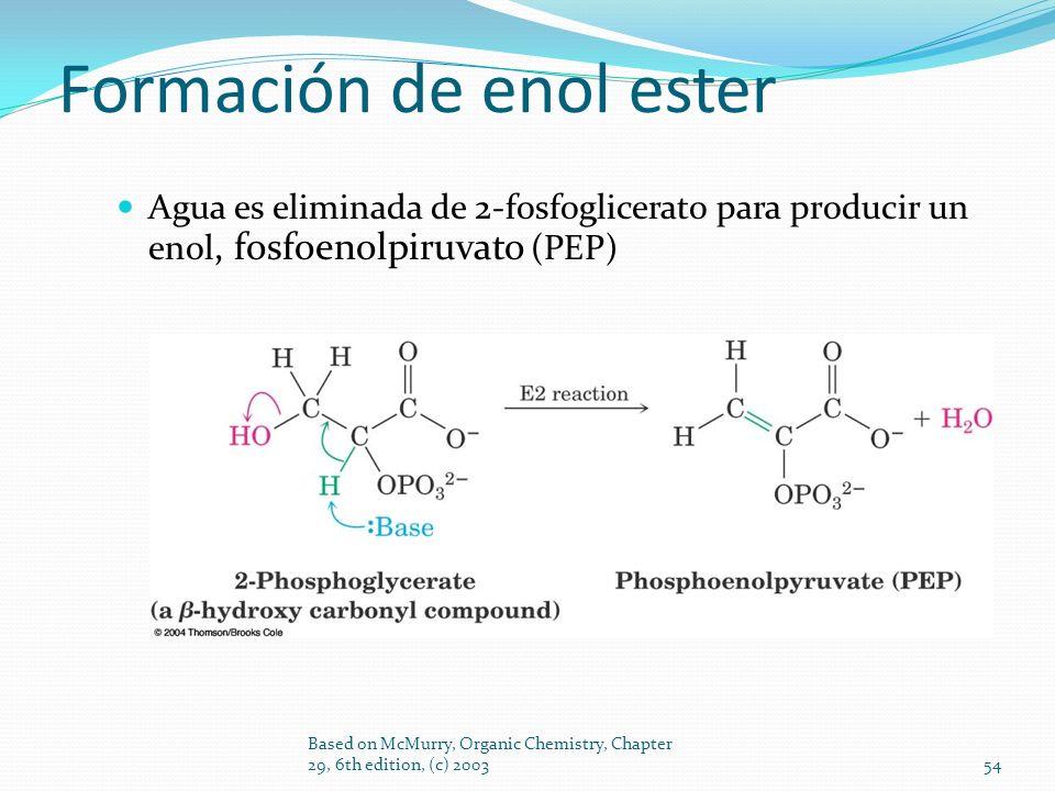 Formación de enol ester