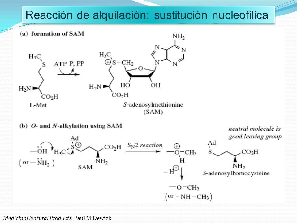 Reacción de alquilación: sustitución nucleofílica