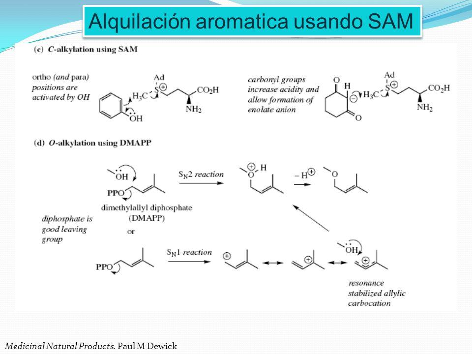 Alquilación aromatica usando SAM