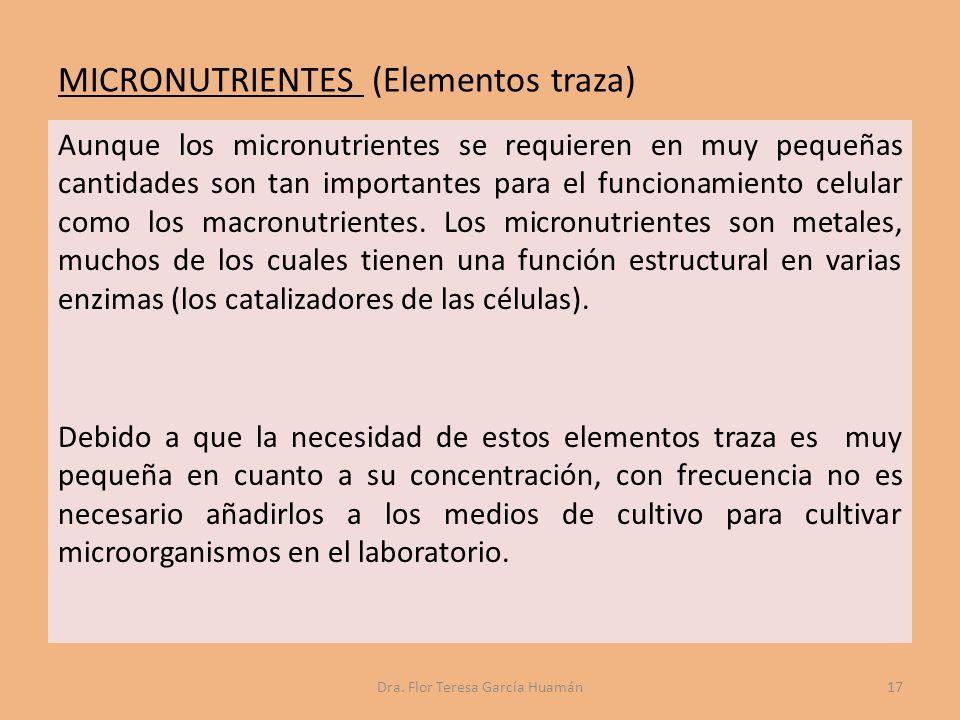 MICRONUTRIENTES (Elementos traza)