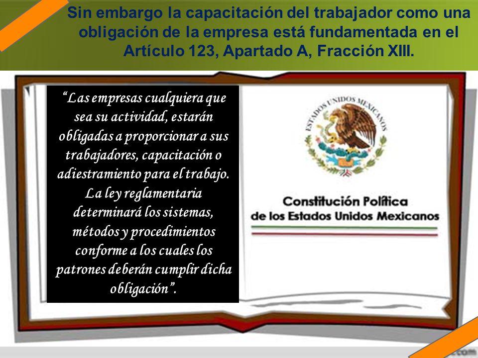 Sin embargo la capacitación del trabajador como una obligación de la empresa está fundamentada en el Artículo 123, Apartado A, Fracción XIII.