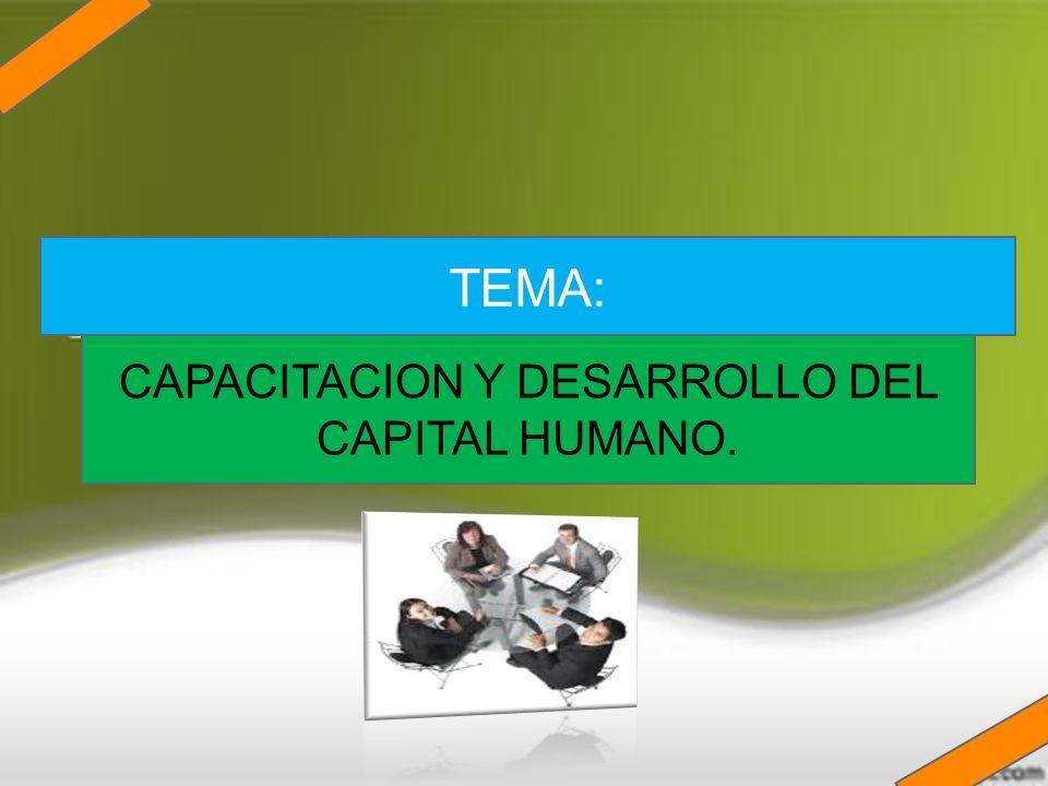 CAPACITACION Y DESARROLLO DEL CAPITAL HUMANO.