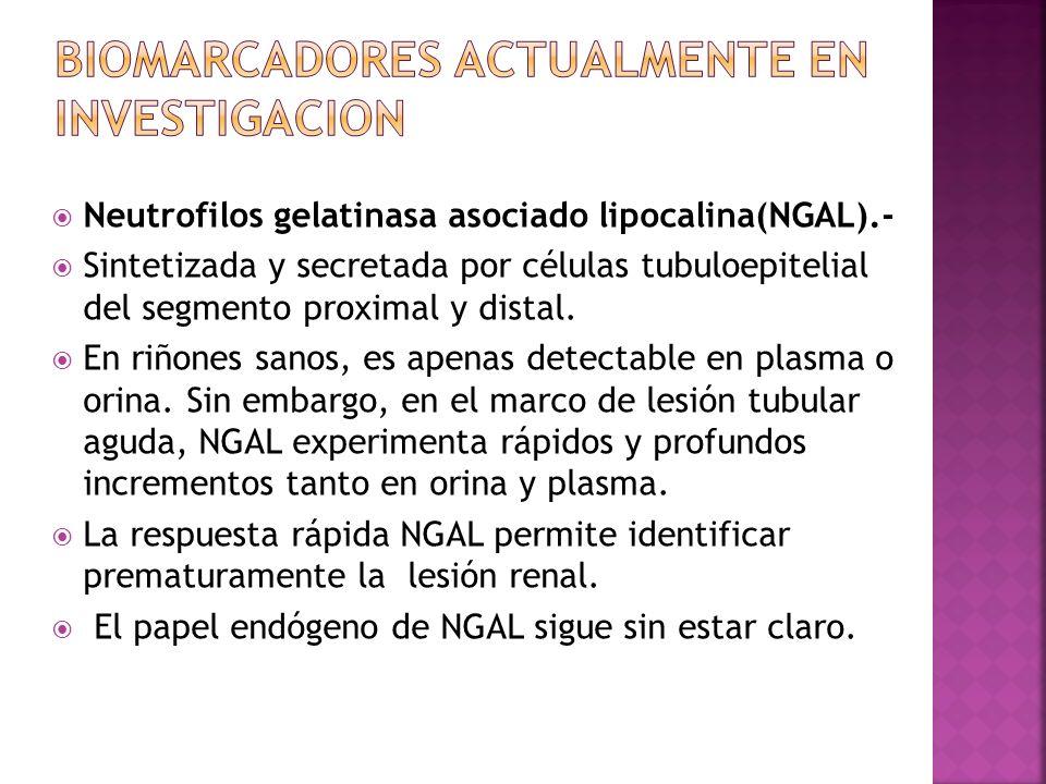 BIOMARCADORES ACTUALMENTE EN INVESTIGACION