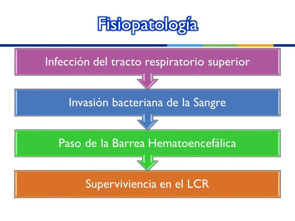 Fisiopatología Infección del tracto respiratorio superior