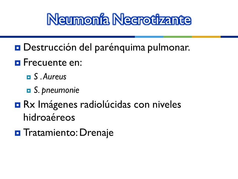 Neumonía Necrotizante