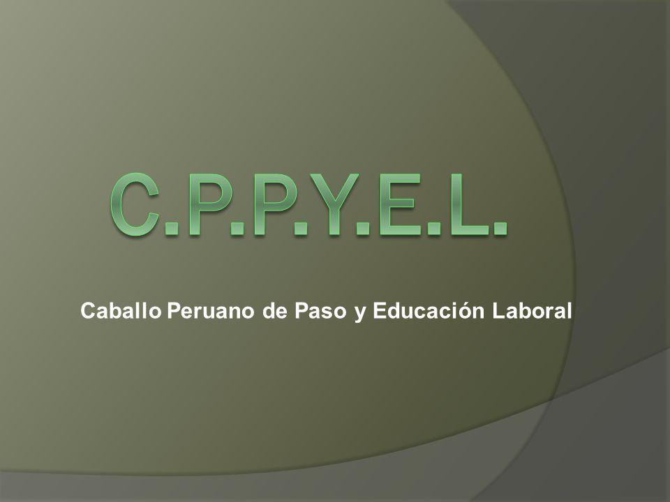 Caballo Peruano de Paso y Educación Laboral