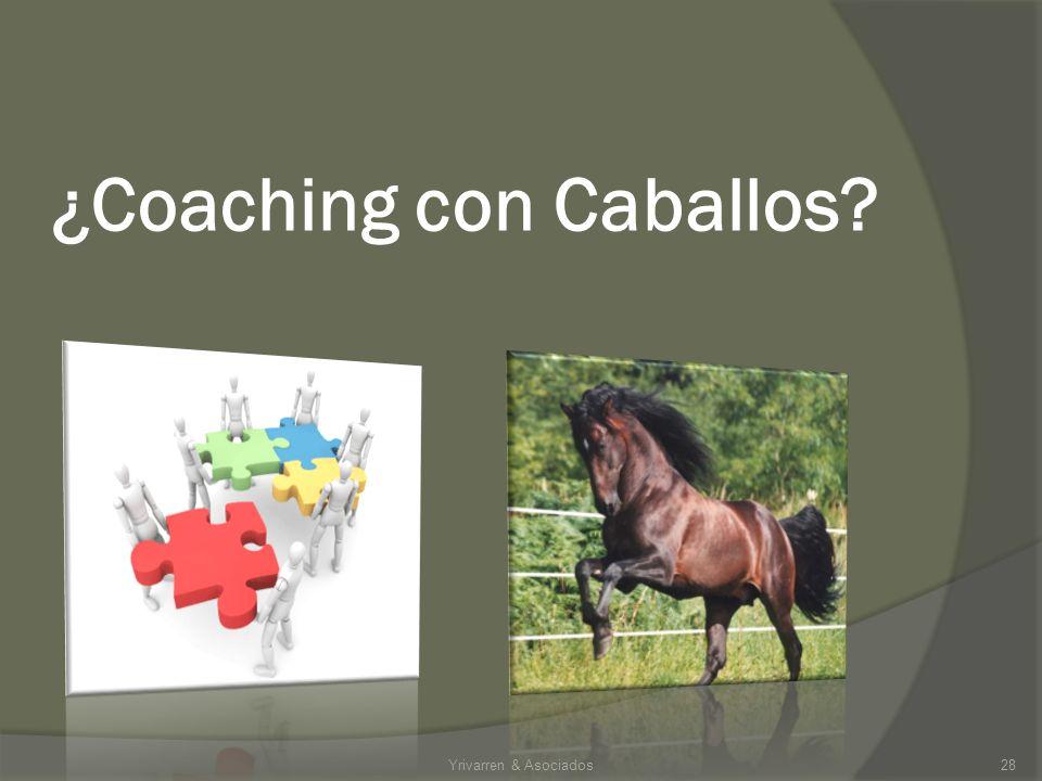 ¿Coaching con Caballos