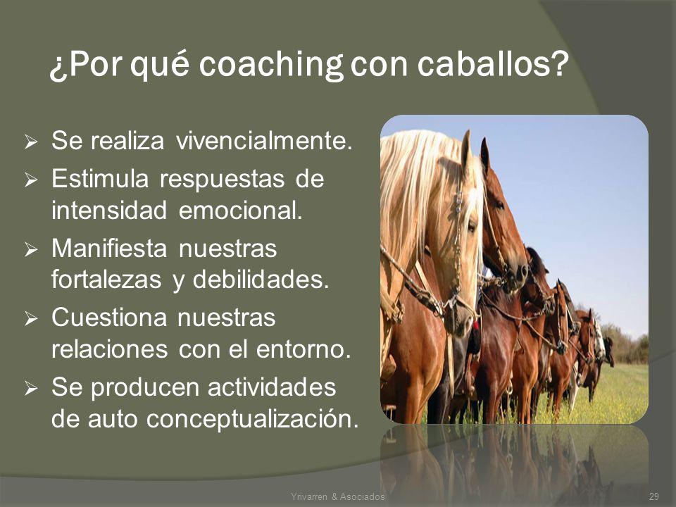 ¿Por qué coaching con caballos