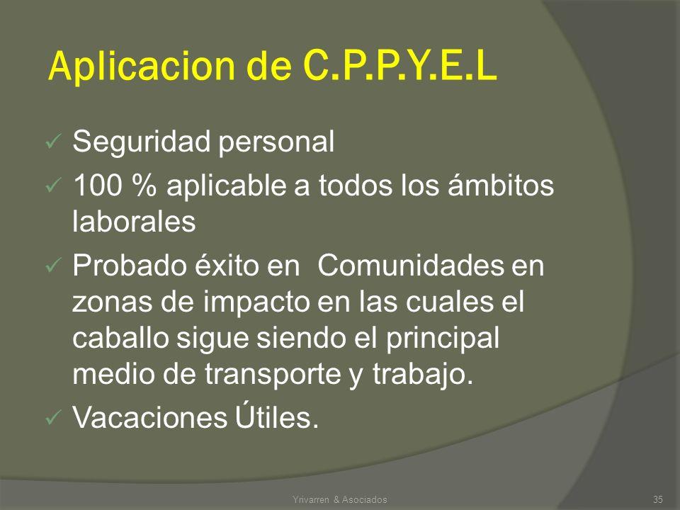 Aplicacion de C.P.P.Y.E.L Seguridad personal