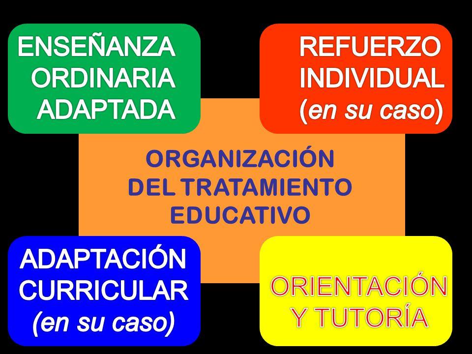 ENSEÑANZA ORDINARIA ADAPTADA REFUERZO INDIVIDUAL (en su caso)