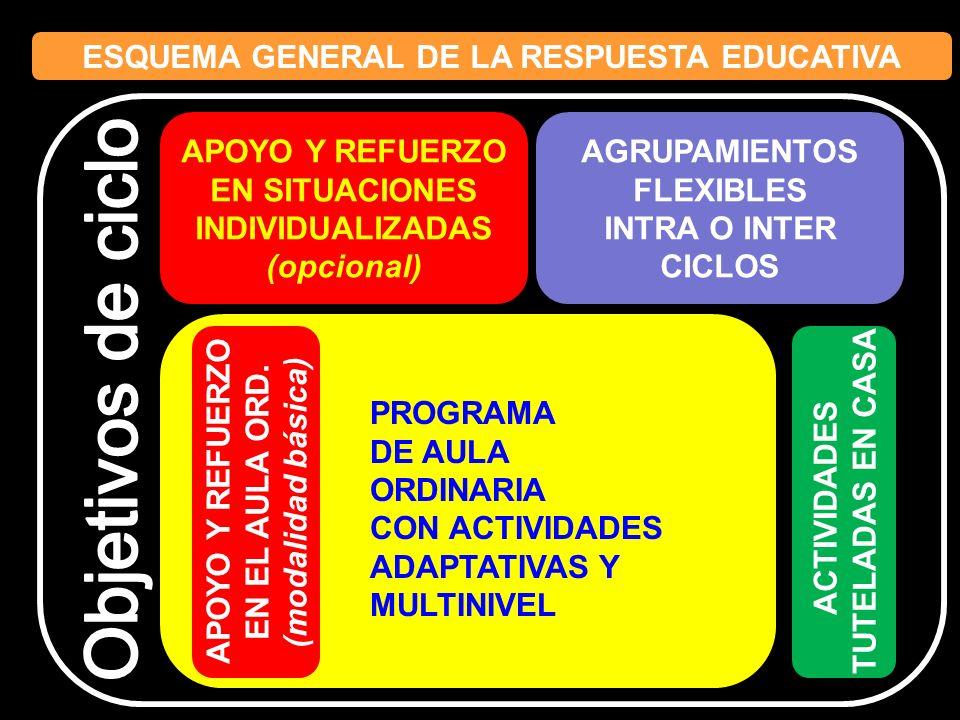 ESQUEMA GENERAL DE LA RESPUESTA EDUCATIVA