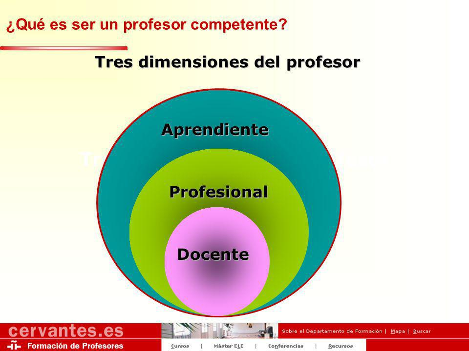 Tres dimensiones del profesor