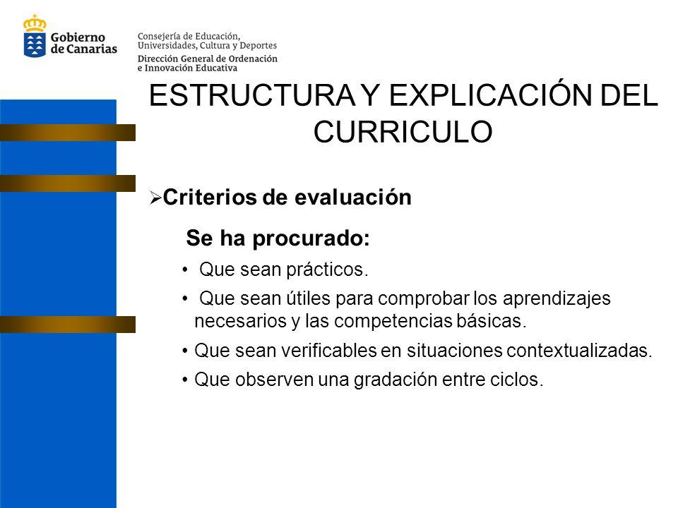 ESTRUCTURA Y EXPLICACIÓN DEL CURRICULO