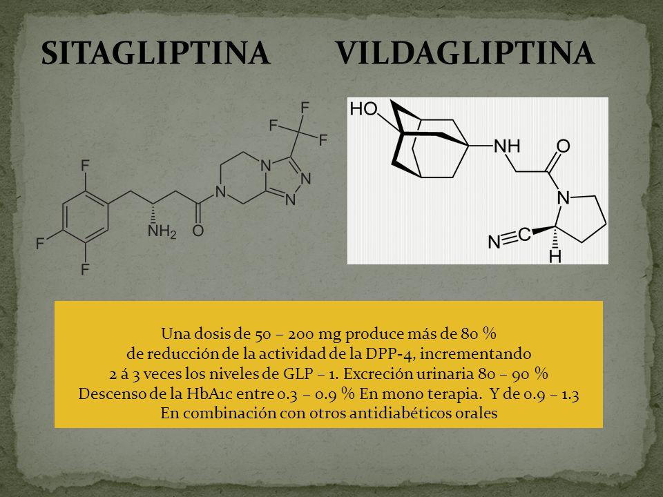 SITAGLIPTINA VILDAGLIPTINA