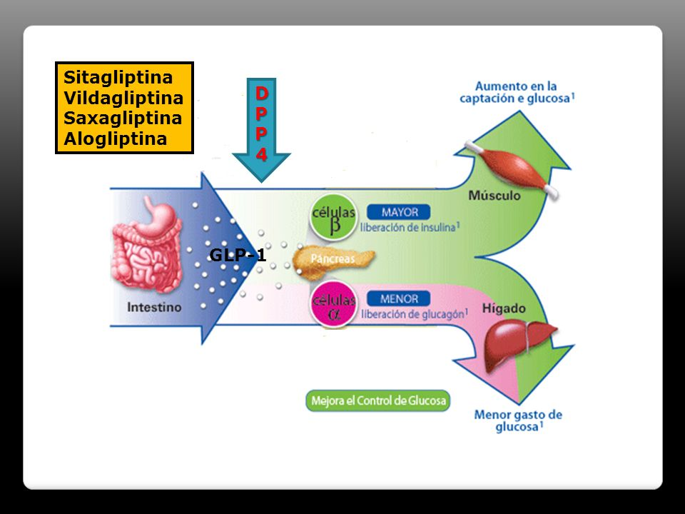 Sitagliptina Vildagliptina Saxagliptina Alogliptina DPP4 GLP-1