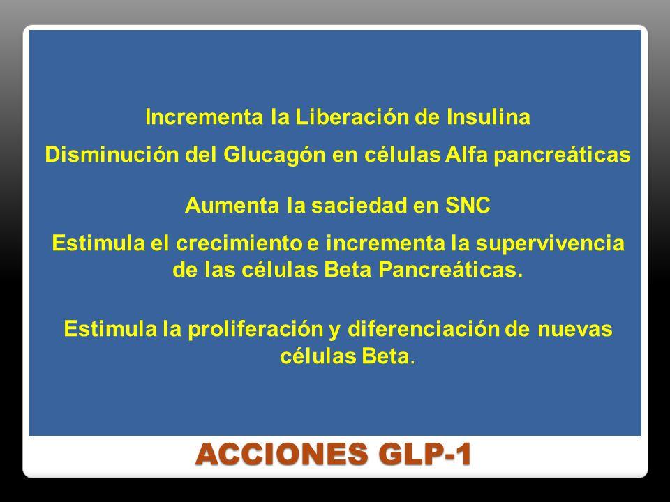Incrementa la Liberación de Insulina Disminución del Glucagón en células Alfa pancreáticas Aumenta la saciedad en SNC Estimula el crecimiento e incrementa la supervivencia de las células Beta Pancreáticas. Estimula la proliferación y diferenciación de nuevas células Beta.