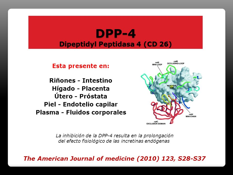 DPP-4 Dipeptidyl Peptidasa 4 (CD 26)