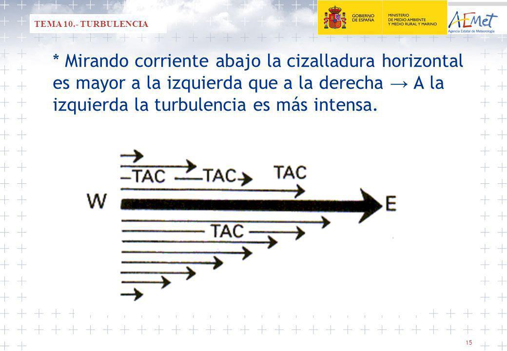 TEMA 10.- TURBULENCIA