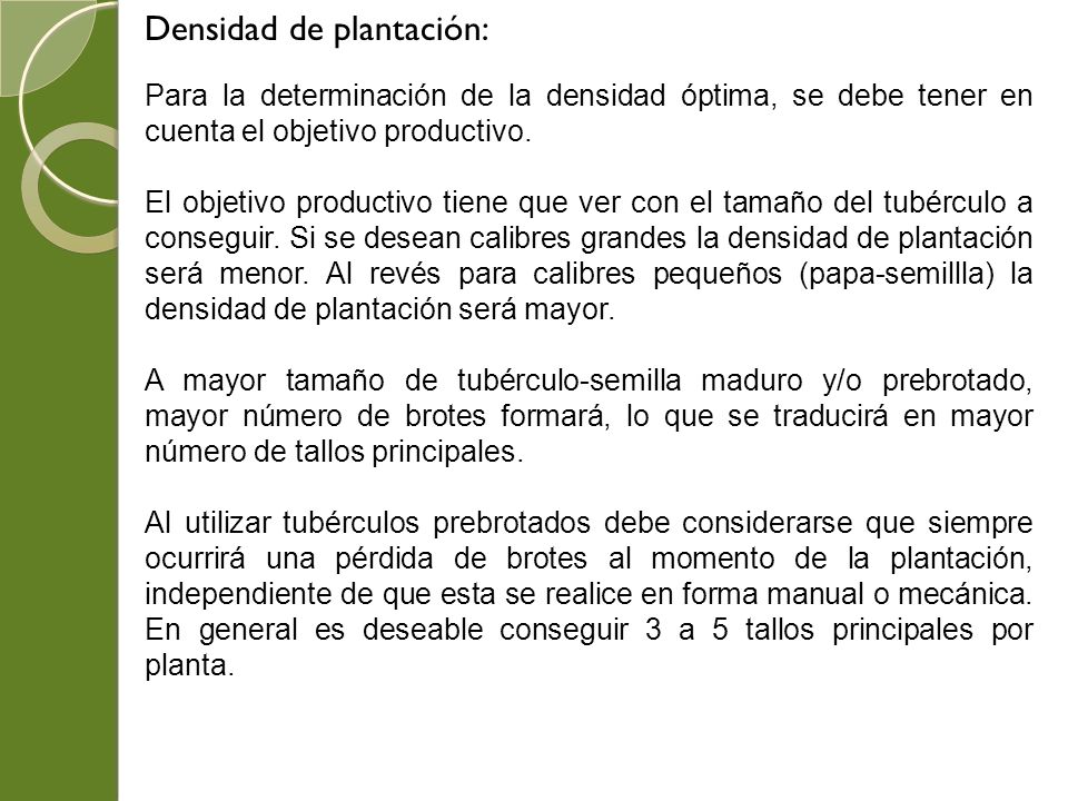 Densidad de plantación: