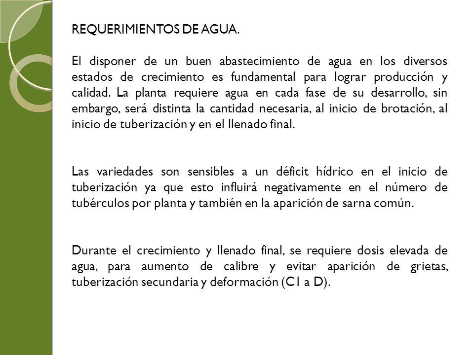 REQUERIMIENTOS DE AGUA.