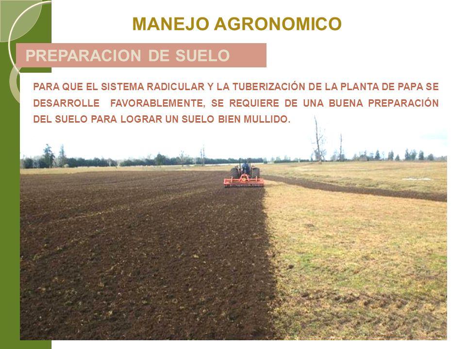 MANEJO AGRONOMICO PREPARACION DE SUELO
