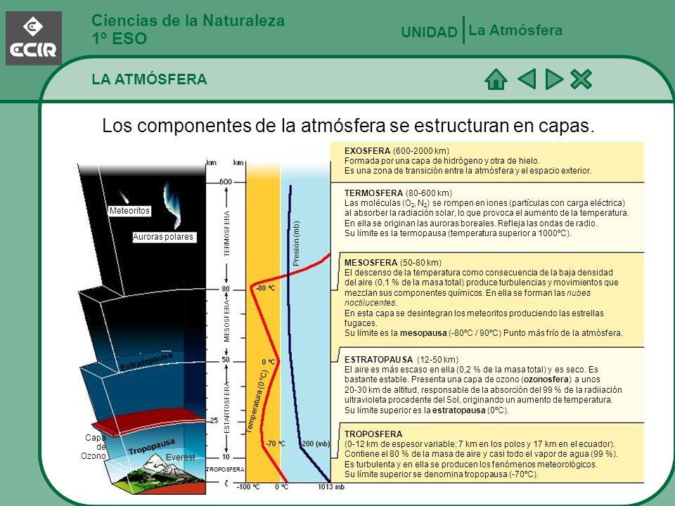 Los componentes de la atmósfera se estructuran en capas.