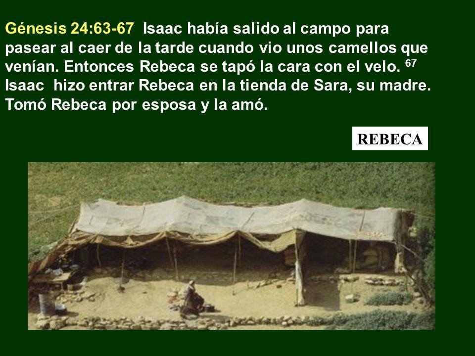Génesis 24:63-67 Isaac había salido al campo para pasear al caer de la tarde cuando vio unos camellos que venían. Entonces Rebeca se tapó la cara con el velo. 67 Isaac hizo entrar Rebeca en la tienda de Sara, su madre. Tomó Rebeca por esposa y la amó.