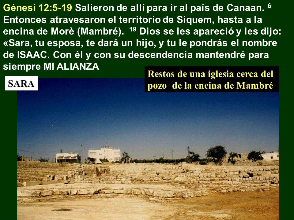 Génesi 12:5-19 Salieron de allí para ir al país de Canaan