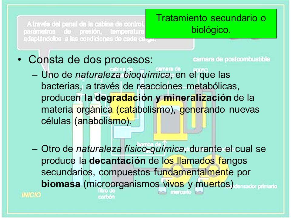 Tratamiento secundario o biológico.