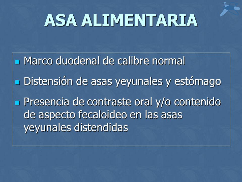 ASA ALIMENTARIA Marco duodenal de calibre normal