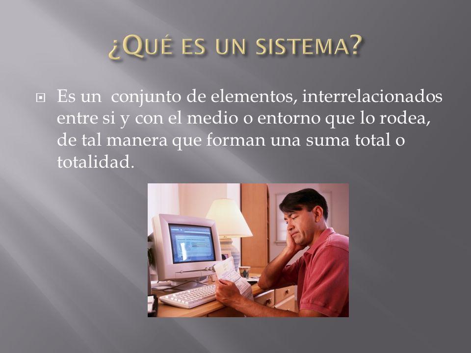 ¿Qué es un sistema