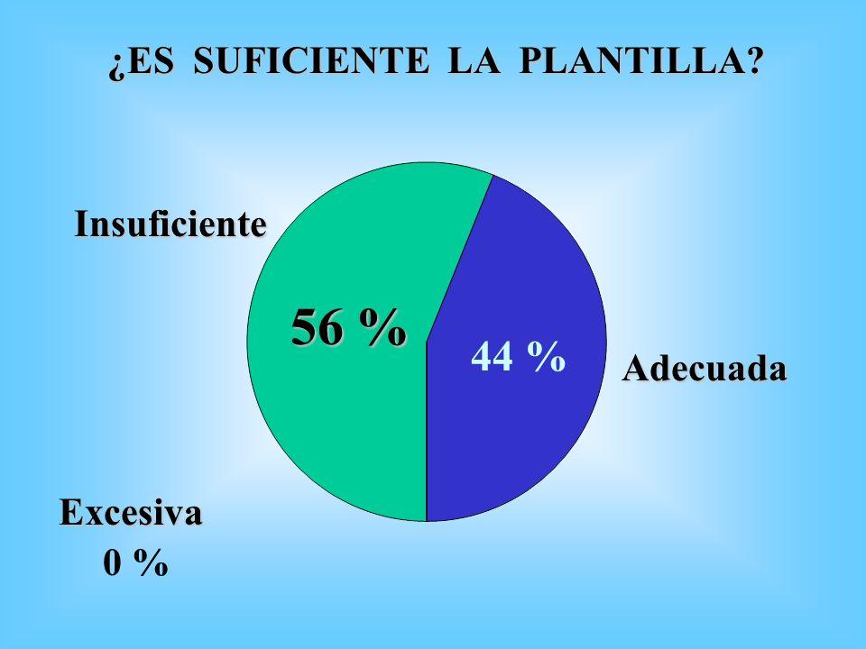 56 % 44 % ¿ES SUFICIENTE LA PLANTILLA Insuficiente Adecuada Excesiva