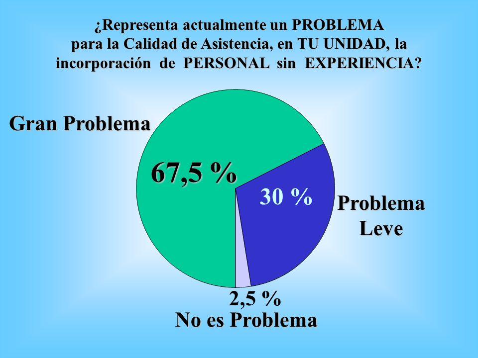 67,5 % 30 % Gran Problema Problema Leve 2,5 % No es Problema