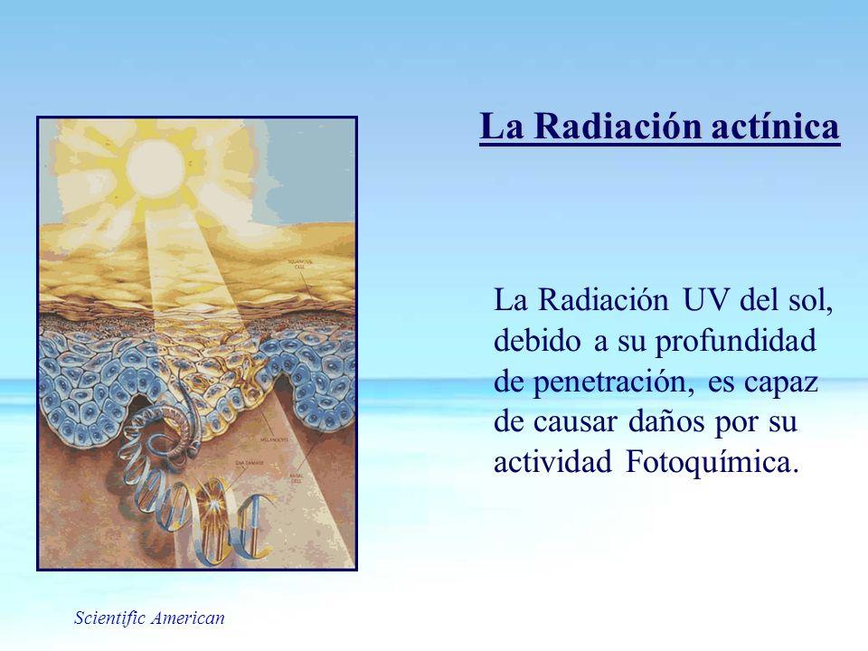 La Radiación actínica La Radiación UV del sol, debido a su profundidad