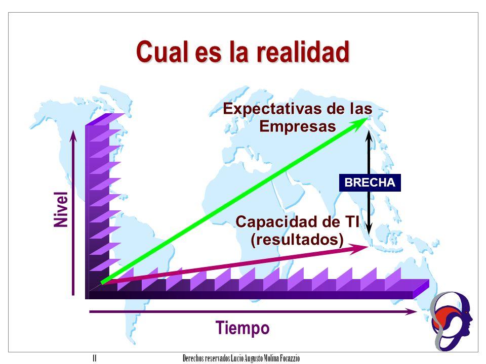 Expectativas de las Empresas Capacidad de TI (resultados)