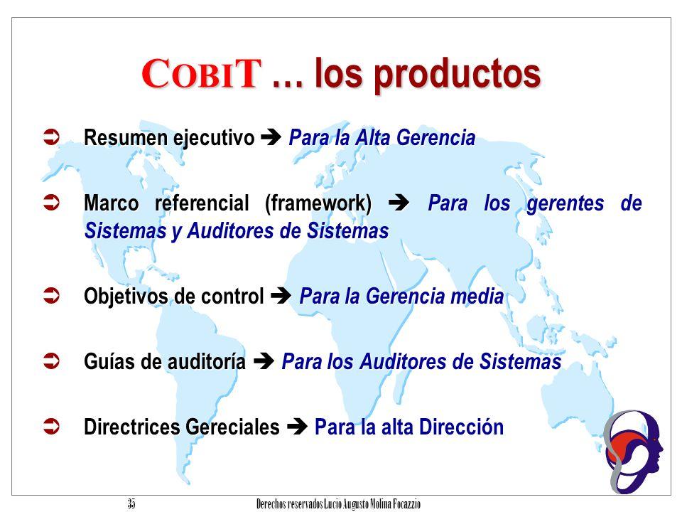 Derechos reservados Lucio Augusto Molina Focazzio