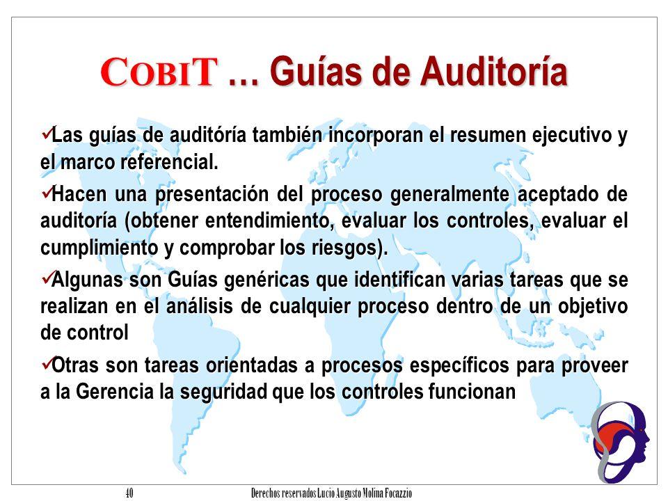 COBIT … Guías de Auditoría