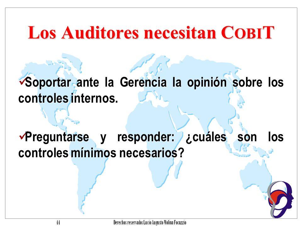 Los Auditores necesitan COBIT
