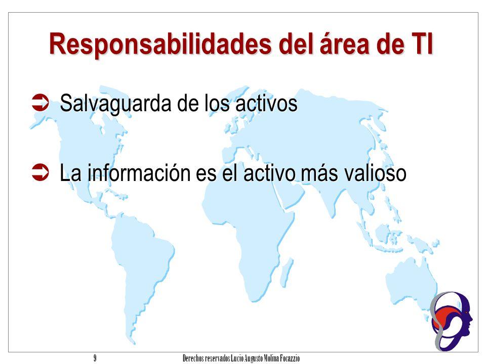 Responsabilidades del área de TI
