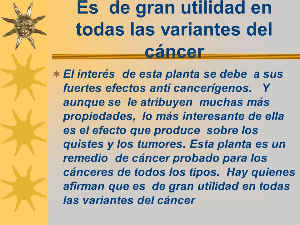 Es de gran utilidad en todas las variantes del cáncer