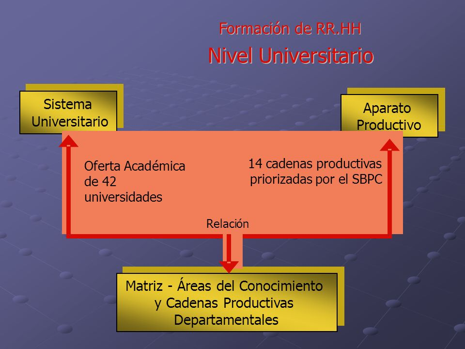 Nivel Universitario Formaci ó n de RR.HH Matriz - Á