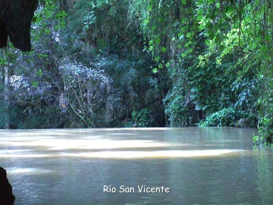 Río San Vicente
