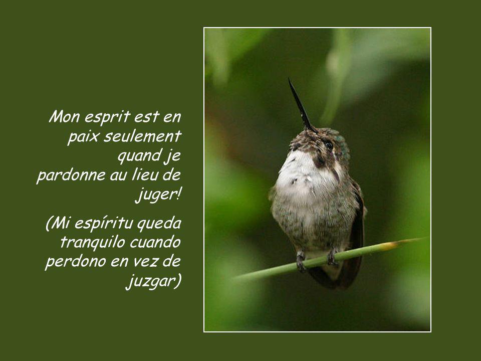 Mon esprit est en paix seulement quand je pardonne au lieu de juger!