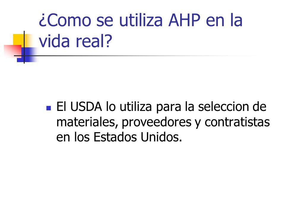 ¿Como se utiliza AHP en la vida real